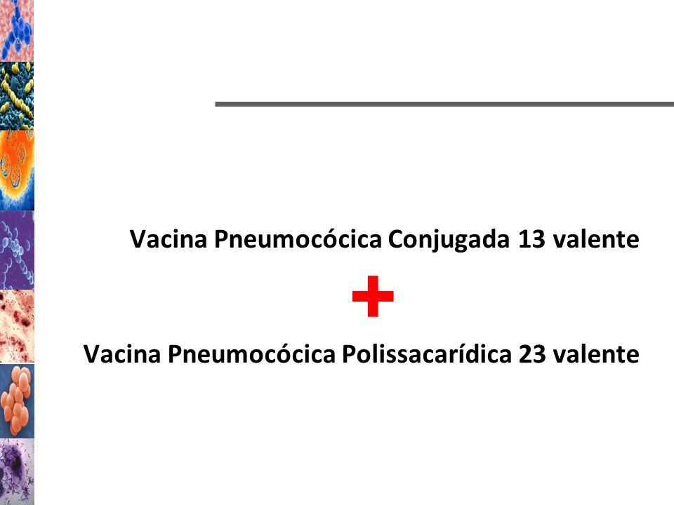 Vacina Pneumocócica Conjugada 13 valente Vacina Pneumocócica Polissacarídica 23 valente