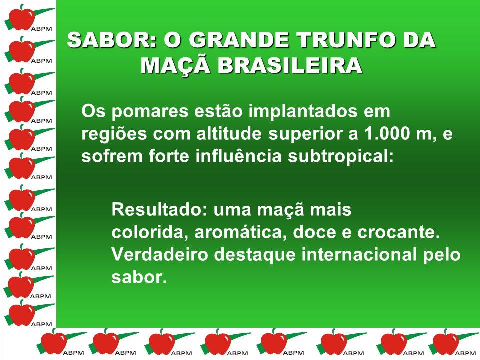 SABOR: O GRANDE TRUNFO DA MAÇÃ BRASILEIRA