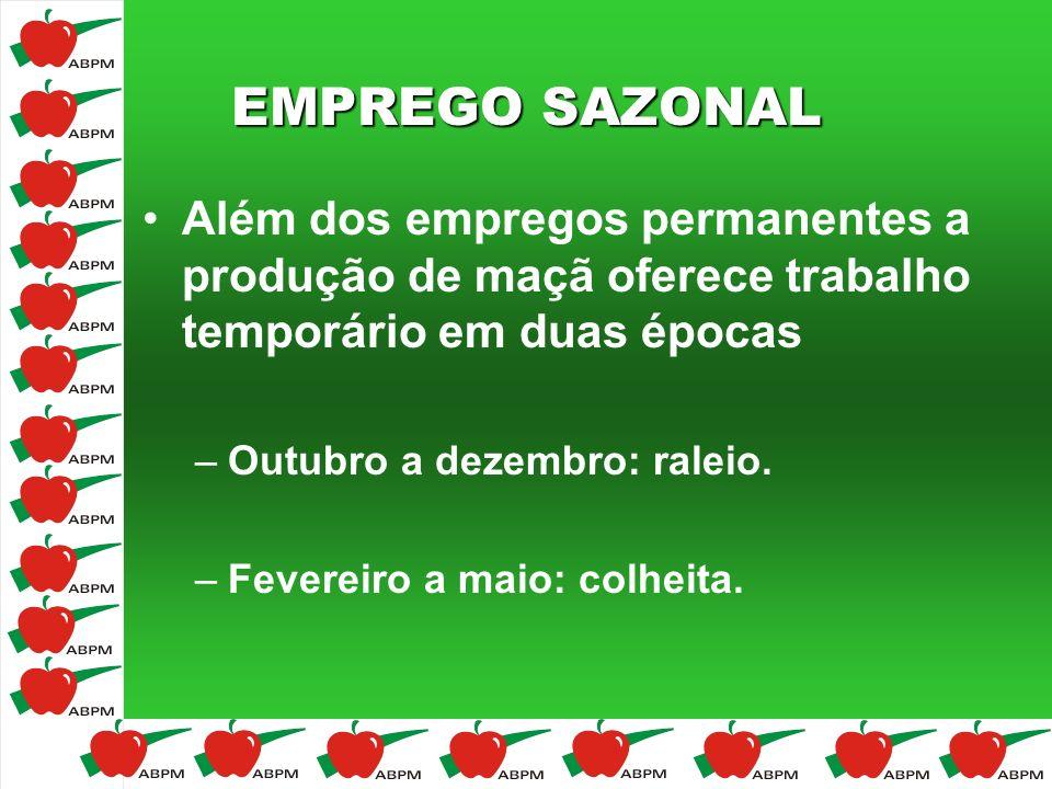 EMPREGO SAZONAL Além dos empregos permanentes a produção de maçã oferece trabalho temporário em duas épocas.