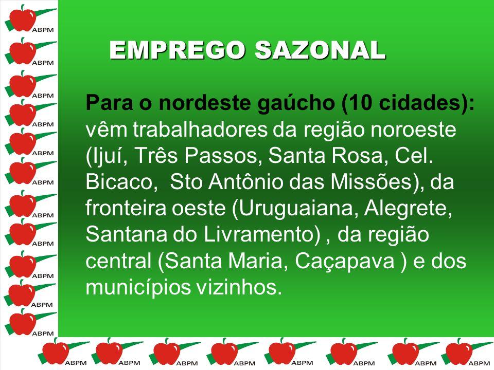 EMPREGO SAZONAL