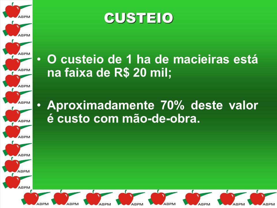 CUSTEIO O custeio de 1 ha de macieiras está na faixa de R$ 20 mil;