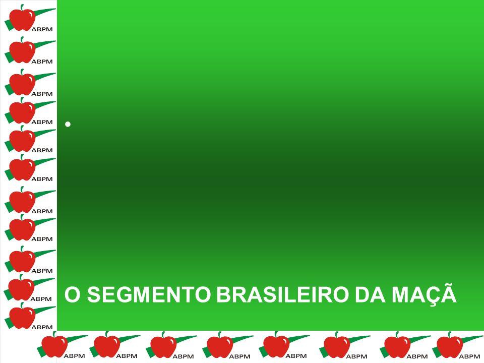 O SEGMENTO BRASILEIRO DA MAÇÃ
