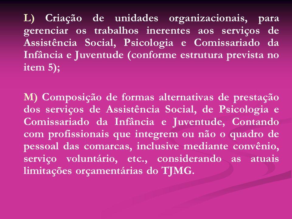 L) Criação de unidades organizacionais, para gerenciar os trabalhos inerentes aos serviços de Assistência Social, Psicologia e Comissariado da Infância e Juventude (conforme estrutura prevista no item 5);