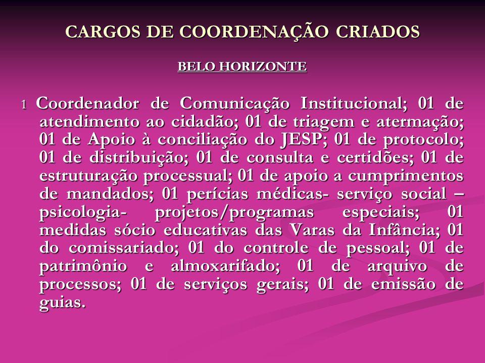 CARGOS DE COORDENAÇÃO CRIADOS