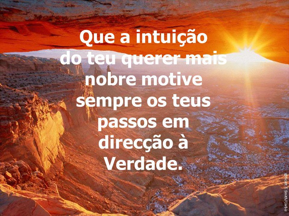 Que a intuição do teu querer mais nobre motive sempre os teus passos em direcção à Verdade.