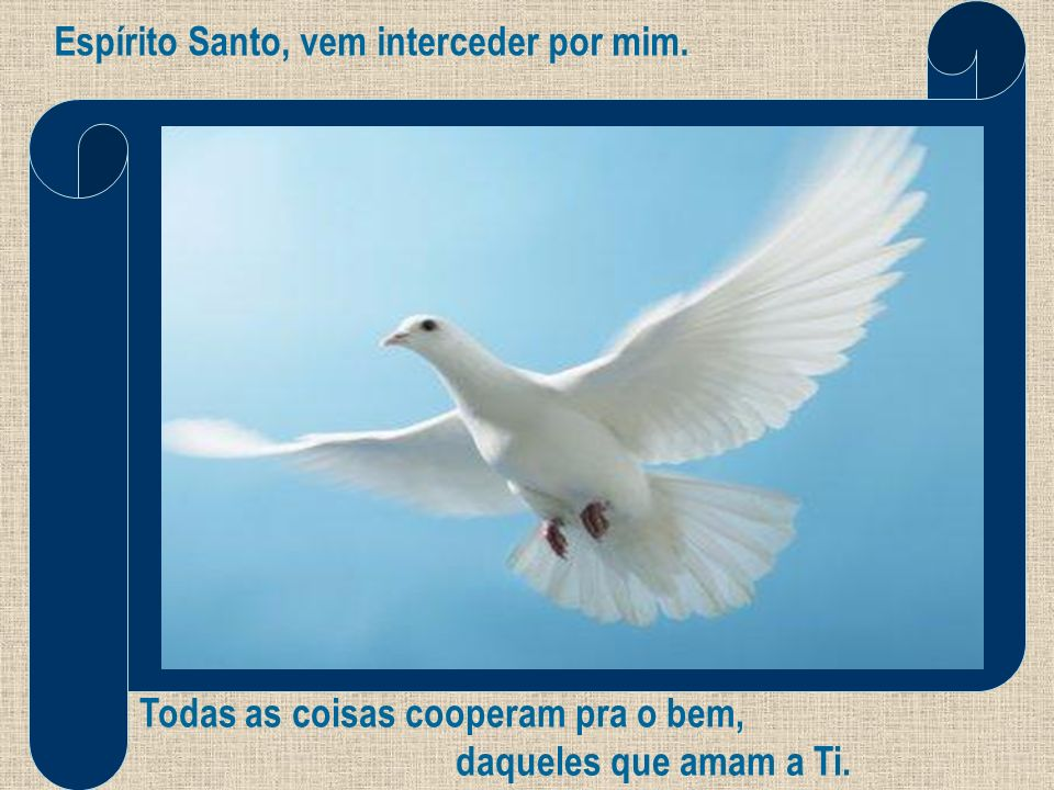 Espírito Santo, vem interceder por mim.