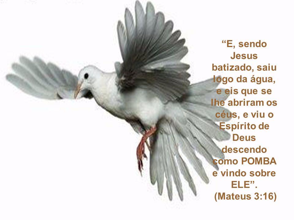 E o Espírito Santo desceu sobre ele em forma corpórea, como POMBA; e ouviu-se uma voz do céu, que dizia: Tu és o meu Filho amado, em ti me comprazo . (Lucas 3:22)