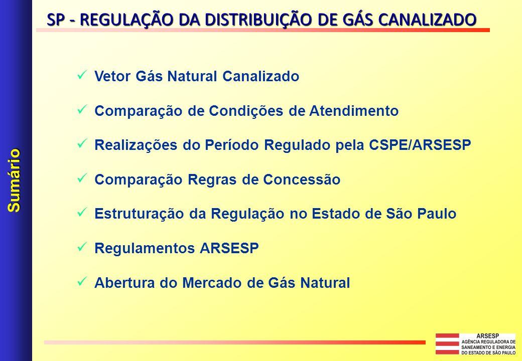 SP - REGULAÇÃO DA DISTRIBUIÇÃO DE GÁS CANALIZADO