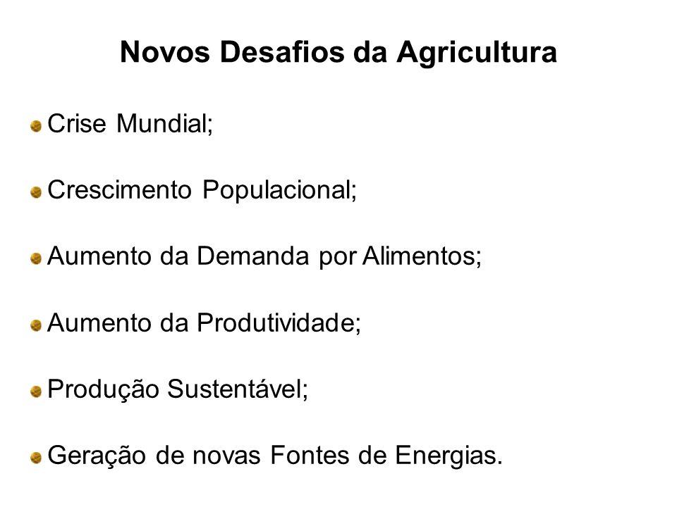 Novos Desafios da Agricultura