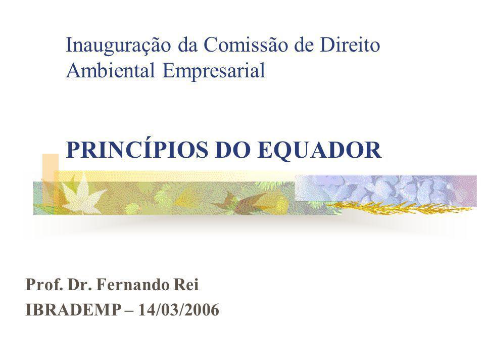 Prof. Dr. Fernando Rei IBRADEMP – 14/03/2006