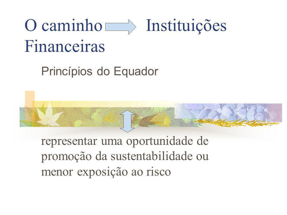 O caminho Instituições Financeiras