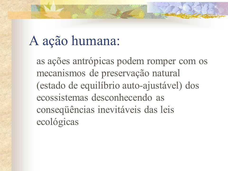 A ação humana: