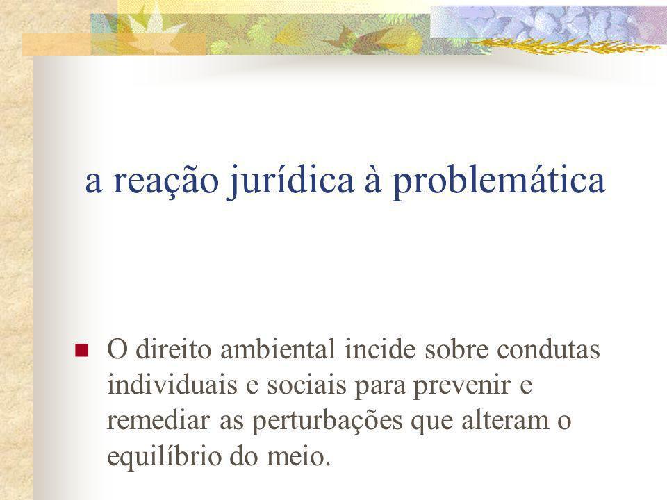 a reação jurídica à problemática