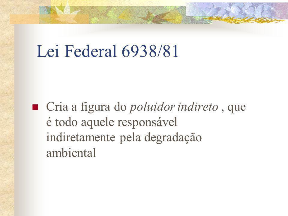 Lei Federal 6938/81 Cria a figura do poluidor indireto , que é todo aquele responsável indiretamente pela degradação ambiental.