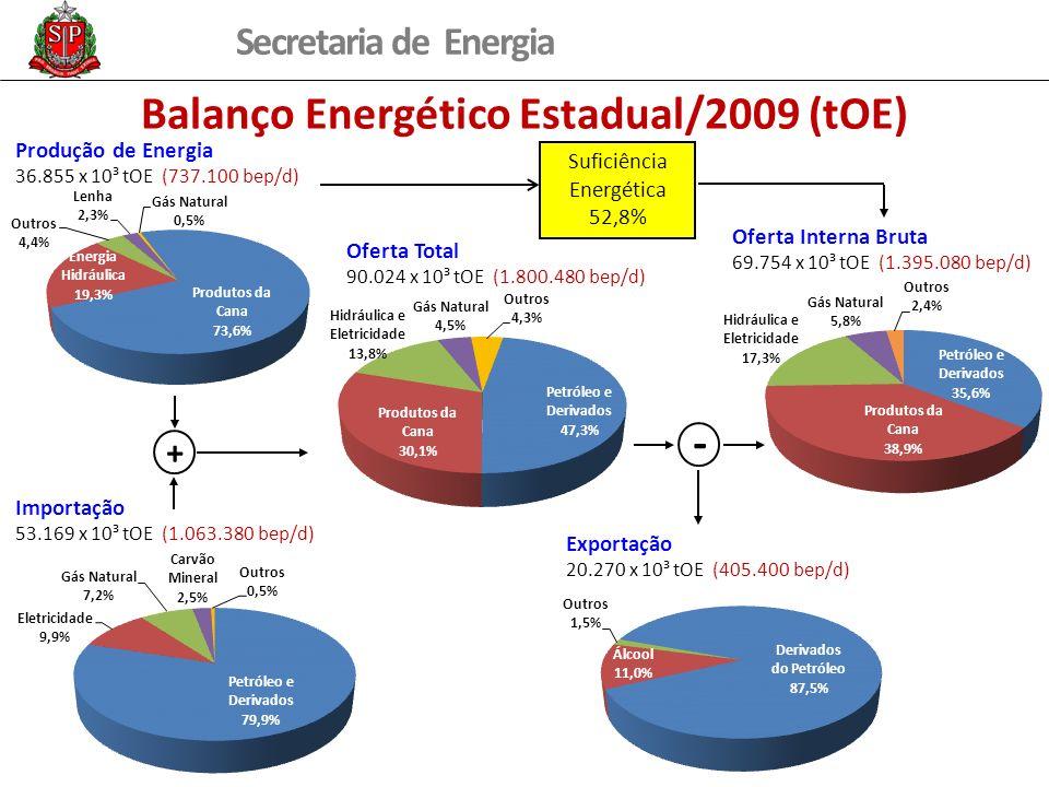 Balanço Energético Estadual/2009 (tOE)