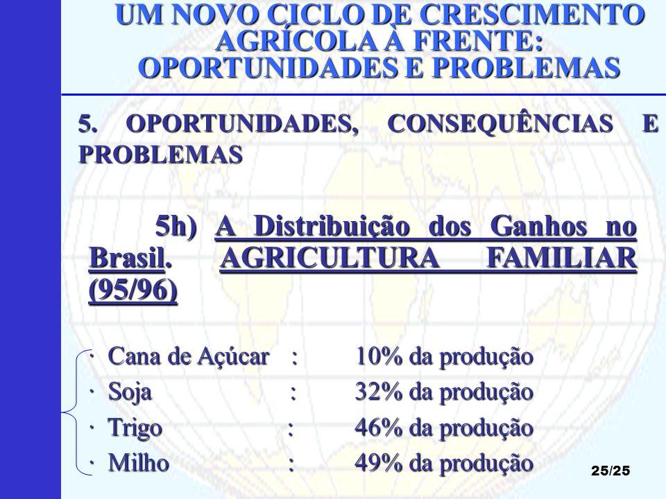5h) A Distribuição dos Ganhos no Brasil. AGRICULTURA FAMILIAR (95/96)