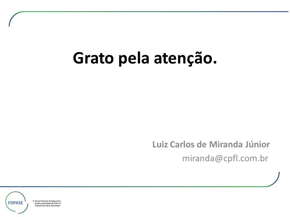 Luiz Carlos de Miranda Júnior miranda@cpfl.com.br
