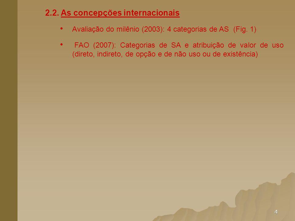 2.2. As concepções internacionais