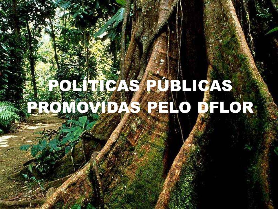 POLÍTICAS PÚBLICAS PROMOVIDAS PELO DFLOR
