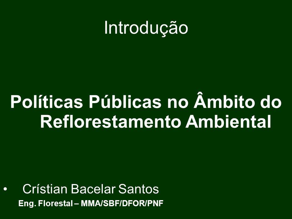 Políticas Públicas no Âmbito do Reflorestamento Ambiental