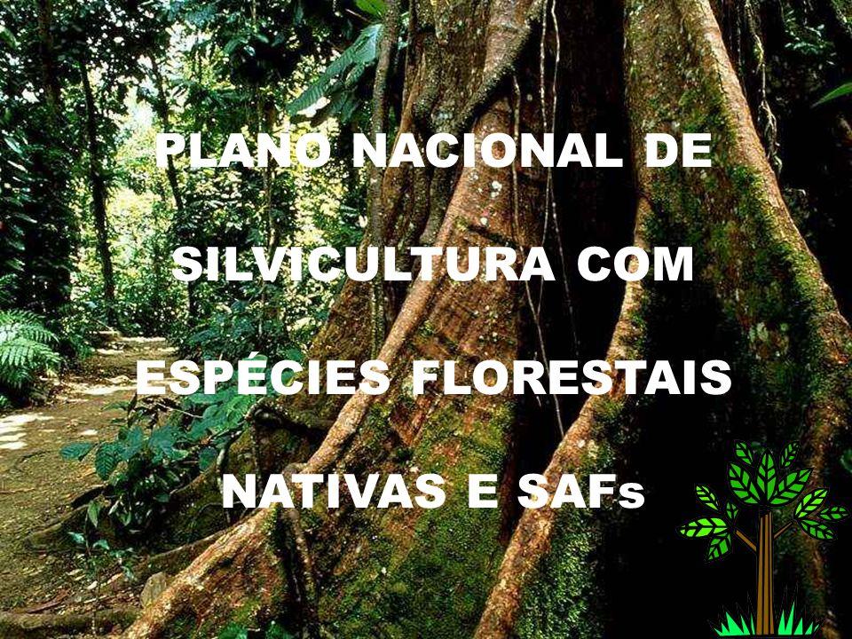 PLANO NACIONAL DE SILVICULTURA COM ESPÉCIES FLORESTAIS NATIVAS E SAFs
