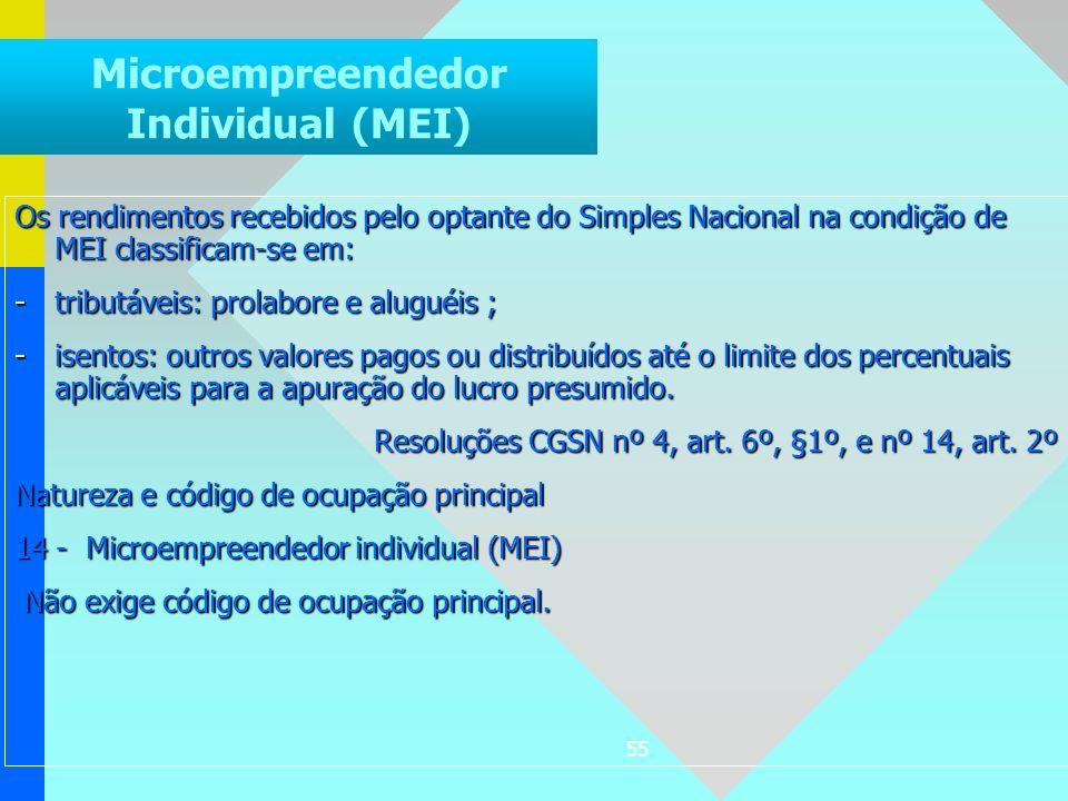 Microempreendedor Individual (MEI)