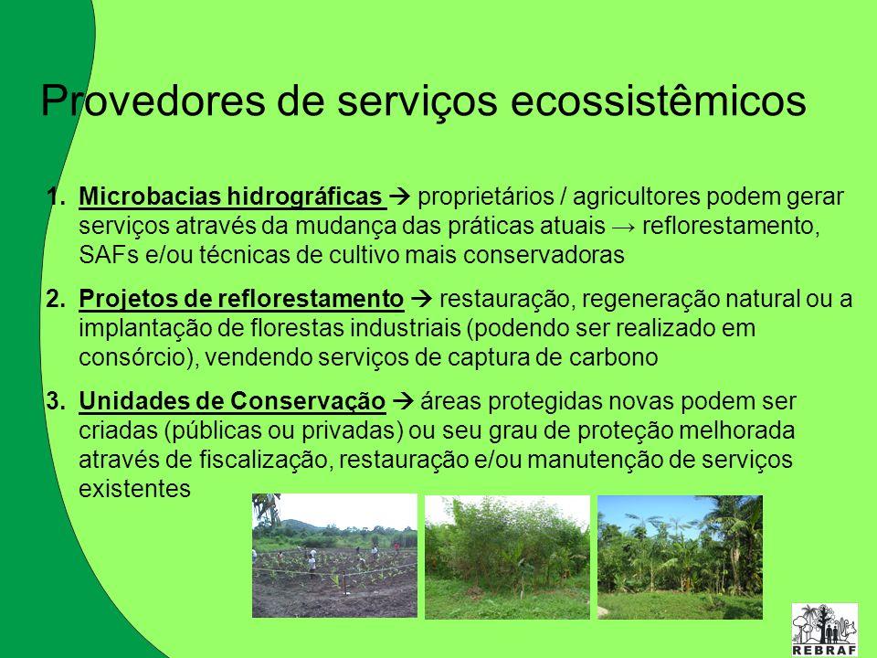Provedores de serviços ecossistêmicos