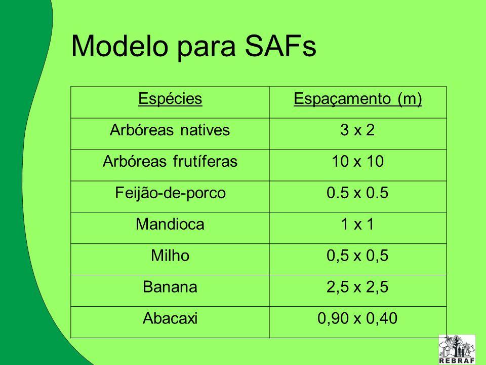 Modelo para SAFs Espécies Espaçamento (m) Arbóreas natives 3 x 2