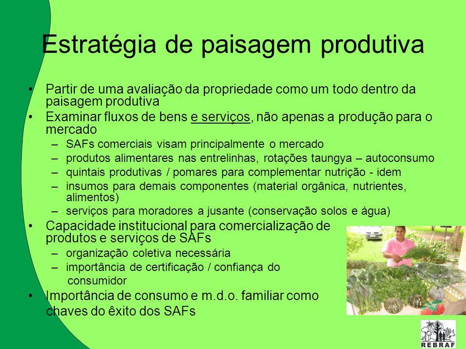 Estratégia de paisagem produtiva
