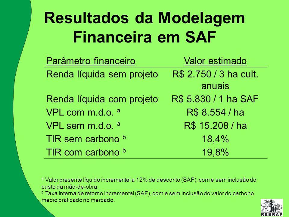 Resultados da Modelagem Financeira em SAF