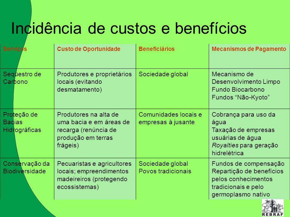 Incidência de custos e benefícios