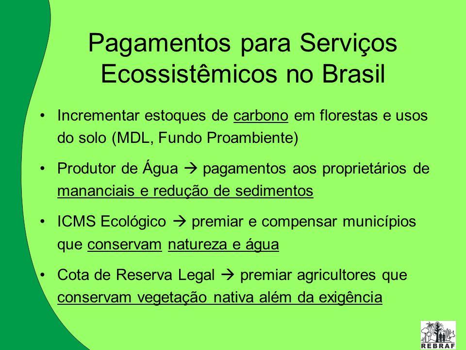 Pagamentos para Serviços Ecossistêmicos no Brasil