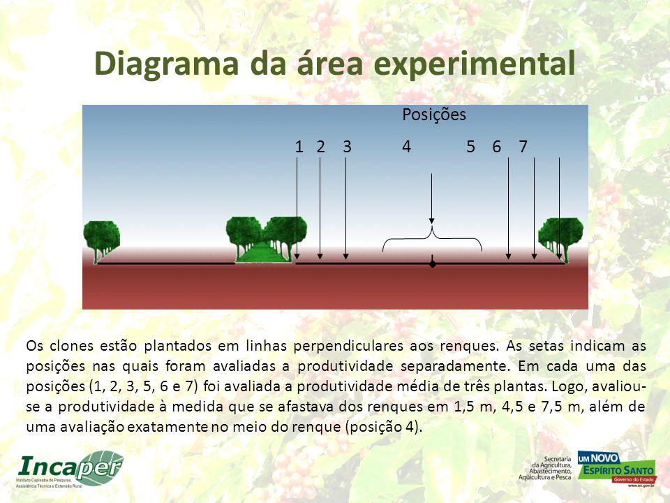 Diagrama da área experimental