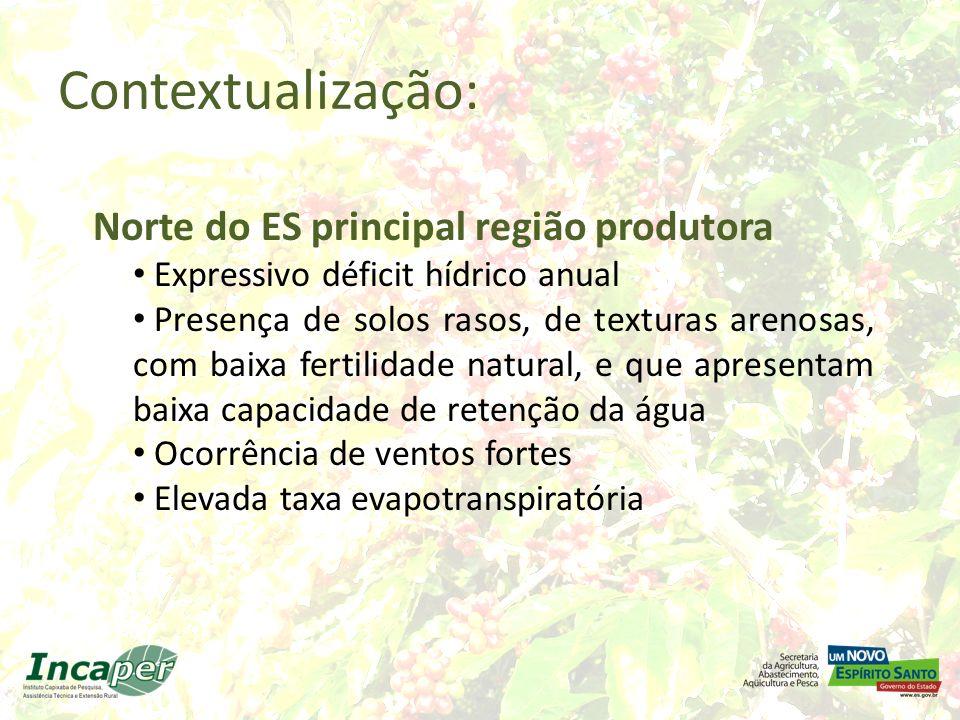 Contextualização: Norte do ES principal região produtora