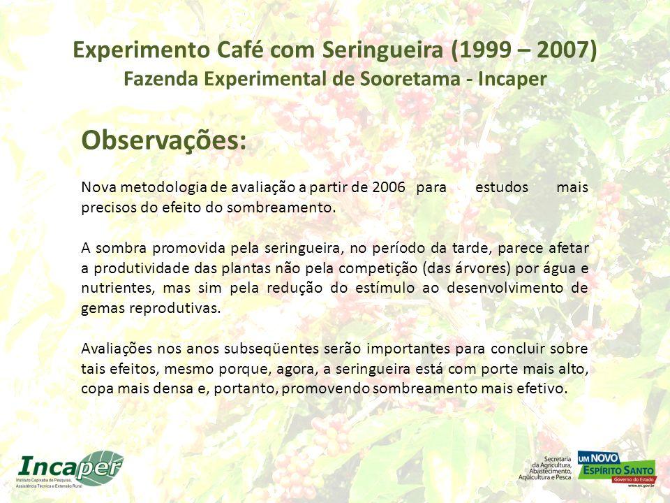 Experimento Café com Seringueira (1999 – 2007) Fazenda Experimental de Sooretama - Incaper