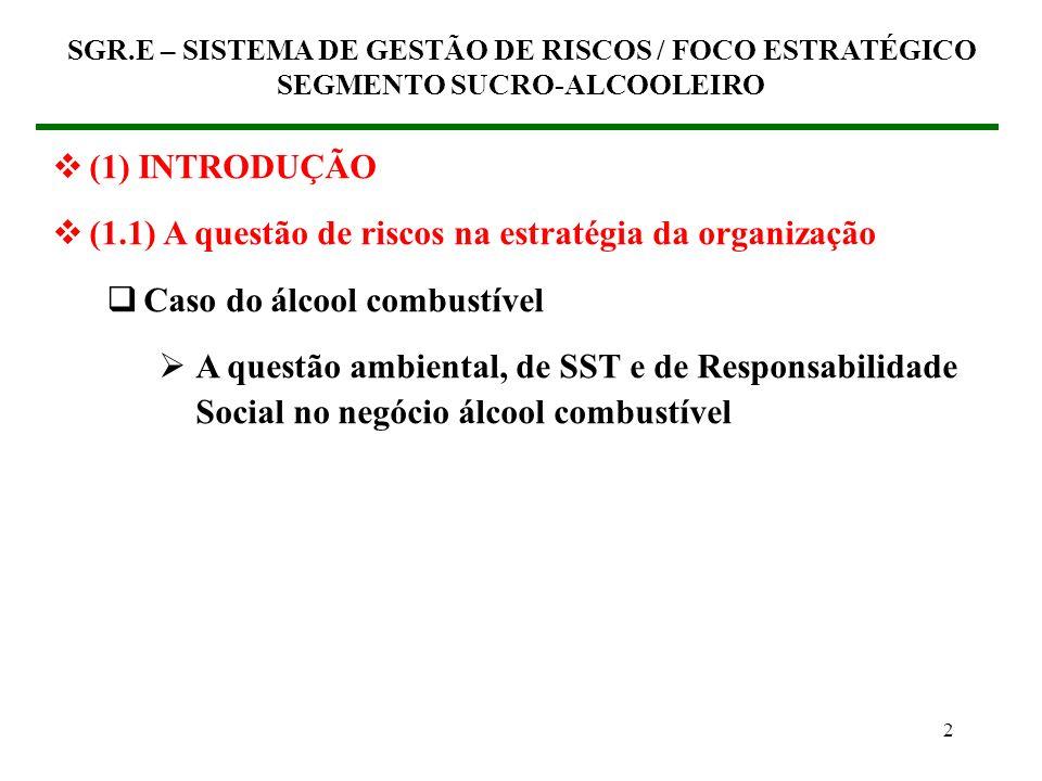 (1.1) A questão de riscos na estratégia da organização