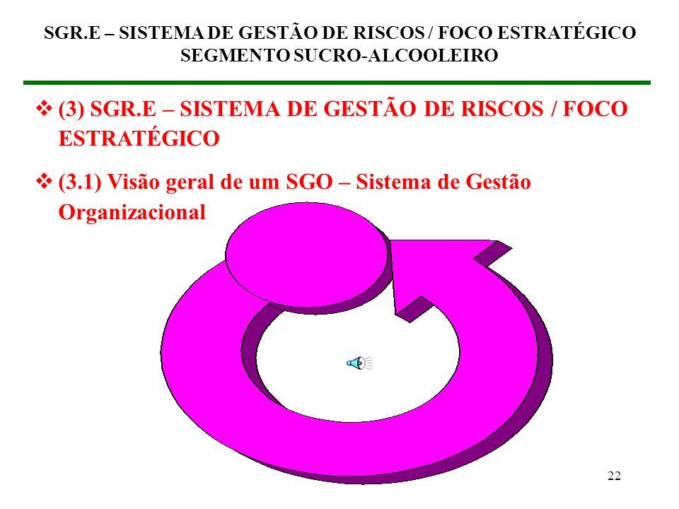 (3) SGR.E – SISTEMA DE GESTÃO DE RISCOS / FOCO ESTRATÉGICO
