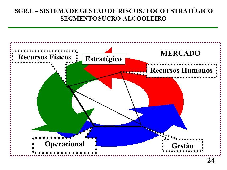 MERCADO Recursos Físicos Estratégico Recursos Humanos Operacional