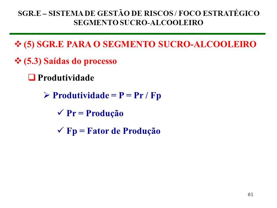 (5) SGR.E PARA O SEGMENTO SUCRO-ALCOOLEIRO (5.3) Saídas do processo