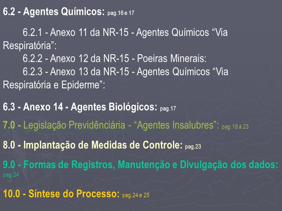 6.2 - Agentes Químicos: pag.16 e 17