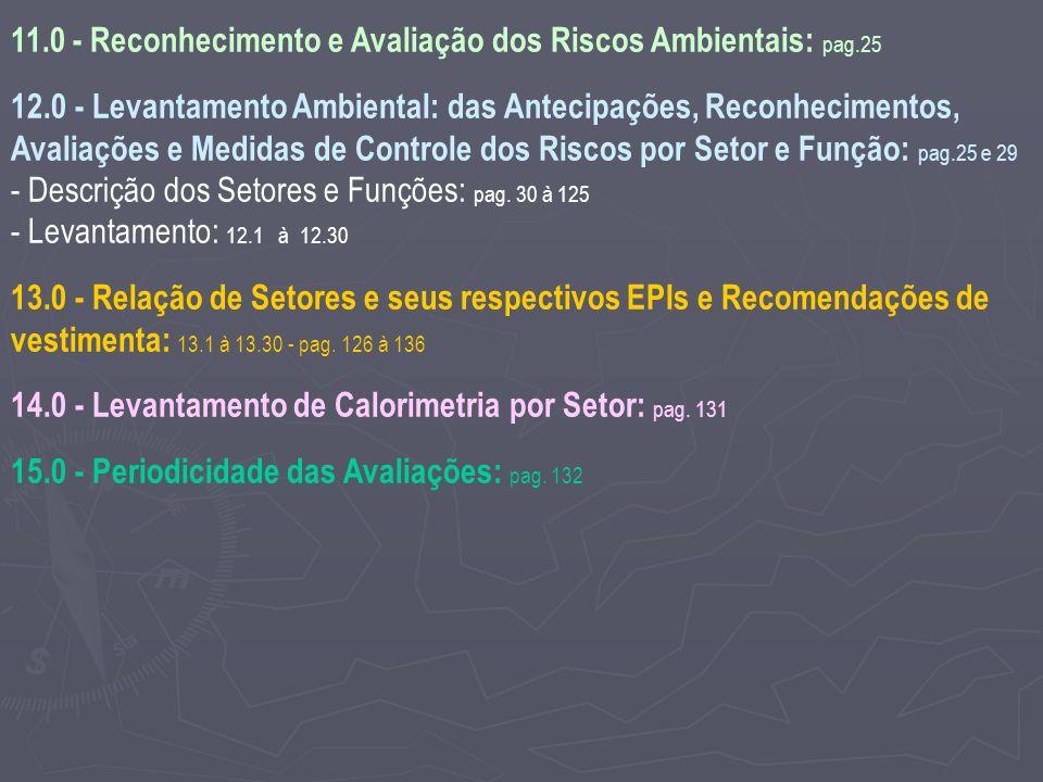 11.0 - Reconhecimento e Avaliação dos Riscos Ambientais: pag.25