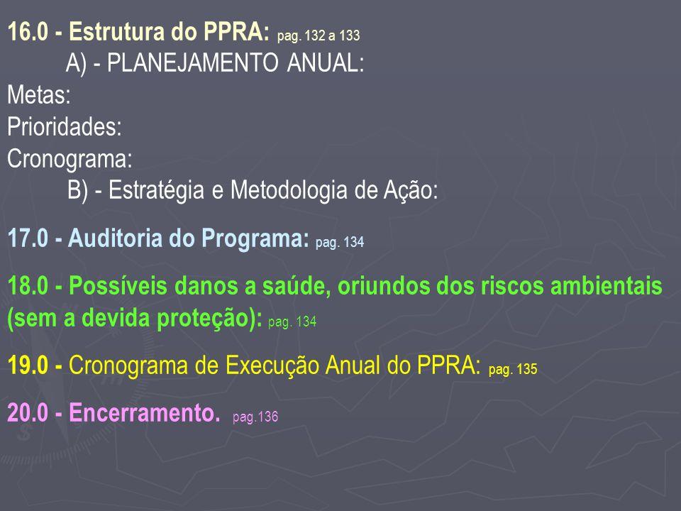 16.0 - Estrutura do PPRA: pag. 132 a 133