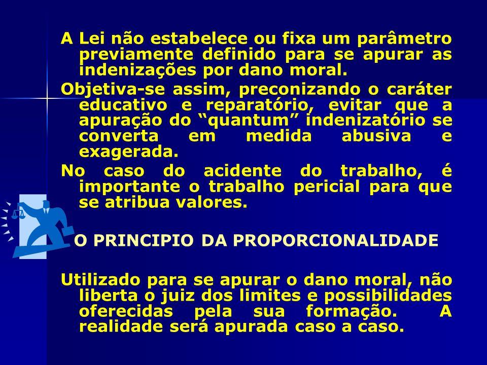 O PRINCIPIO DA PROPORCIONALIDADE