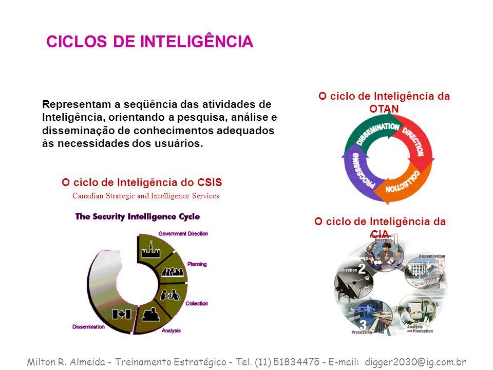 CICLOS DE INTELIGÊNCIA
