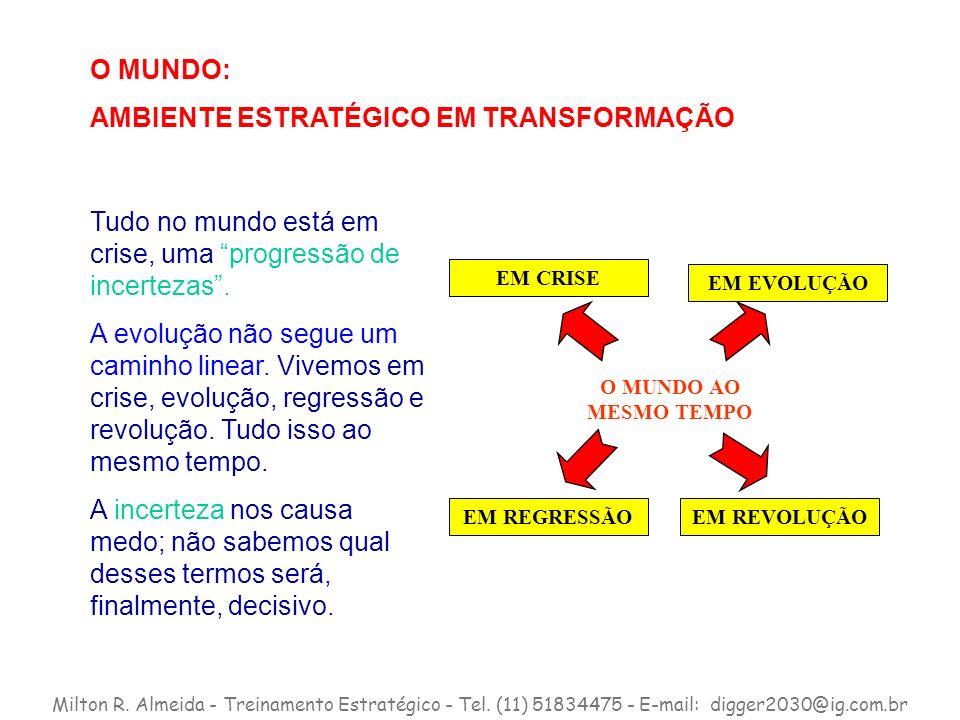 AMBIENTE ESTRATÉGICO EM TRANSFORMAÇÃO