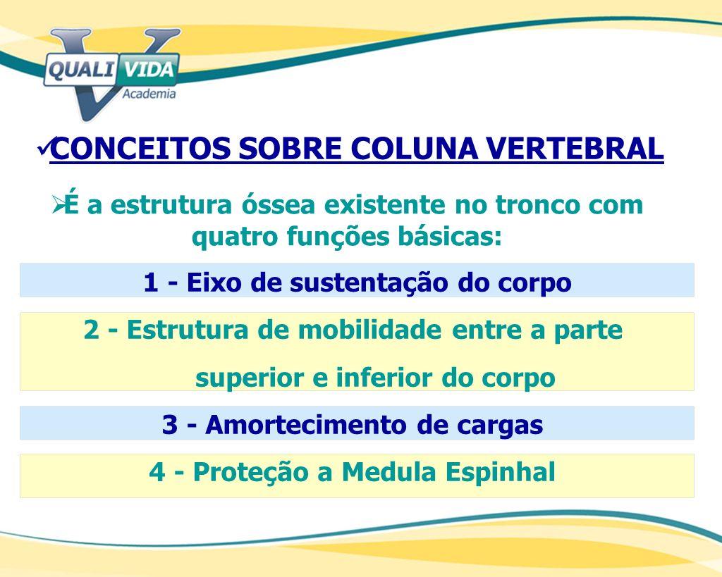 CONCEITOS SOBRE COLUNA VERTEBRAL