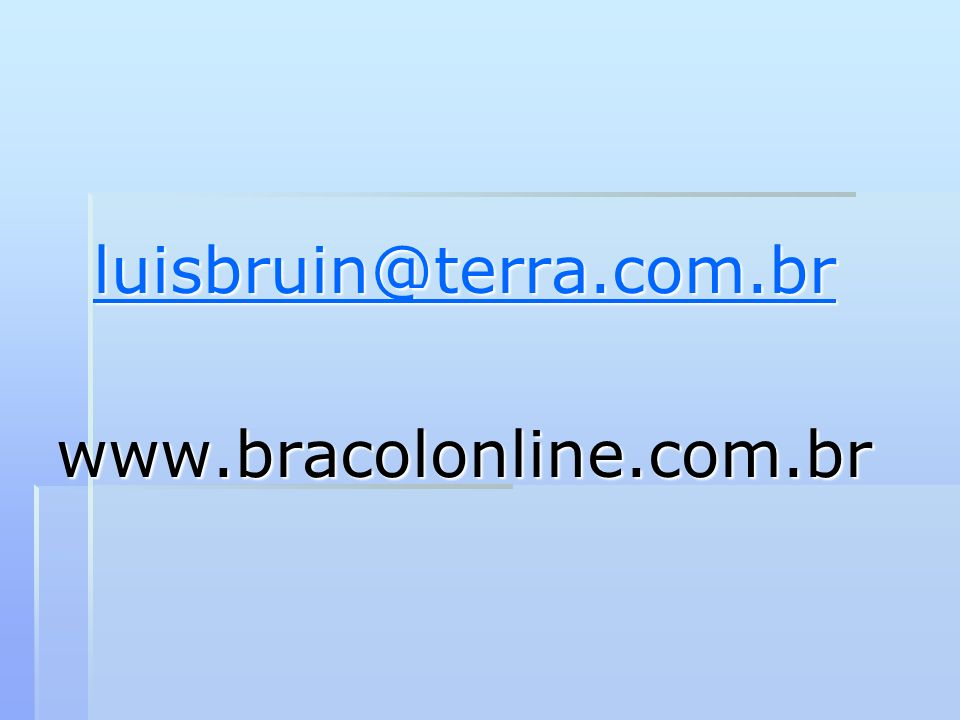 luisbruin@terra.com.br www.bracolonline.com.br