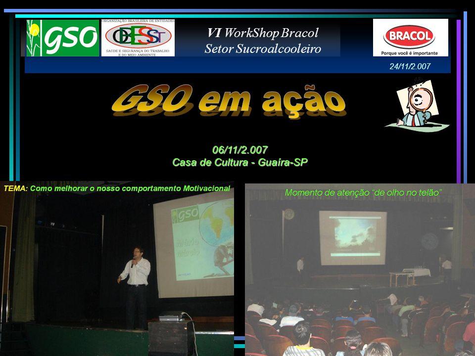 GSO em ação VI WorkShop Bracol Setor Sucroalcooleiro 06/11/2.007