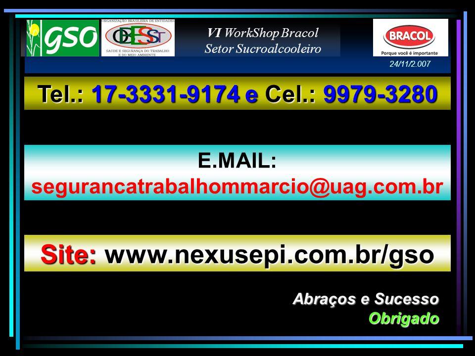 Site: www.nexusepi.com.br/gso