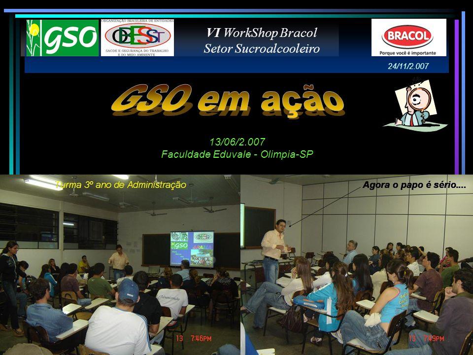 GSO em ação VI WorkShop Bracol Setor Sucroalcooleiro 13/06/2.007